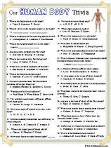 Anatomy Trivia, Our Human Body
