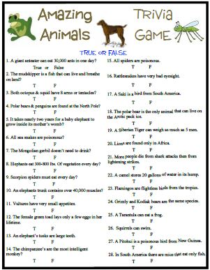 photo regarding Animal Trivia Questions and Answers Printable known as Remarkable pets trivia incorporates some entertaining and attention-grabbing details.