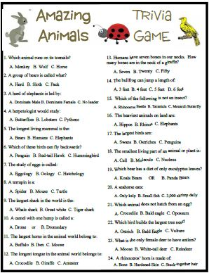 photo relating to Animal Trivia Questions and Answers Printable identified as Remarkable pets trivia incorporates some entertaining and exciting information and facts.