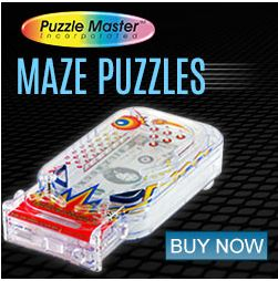 Maze Puzzles are just one part of the growing number of 'kinds' of puzzles there are. Pinball puzzle anyone?
